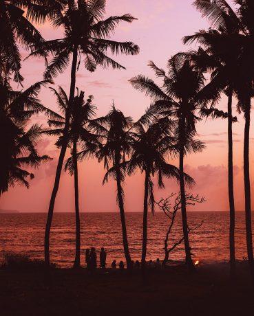 Jungle Beach Sri Lanka